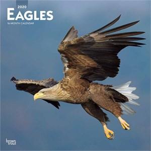 Eagles Calendar 2016