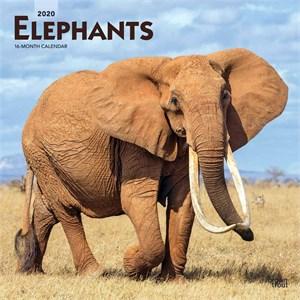 Elephants Calendar 2015