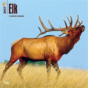Elk Calendar 2015