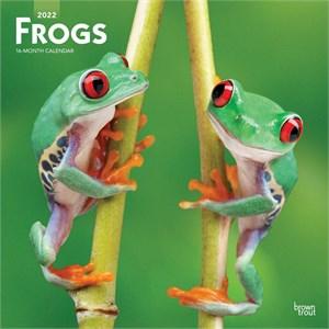 Frogs Calendar 2015