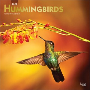 Hummingbirds Calendar 2014