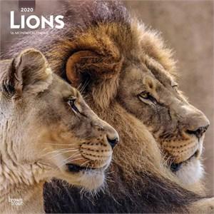 Lions Calendar 2015