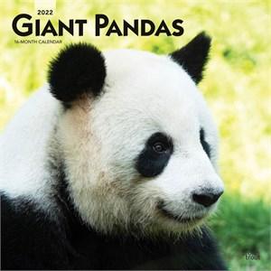 Pandas Calendar 2015