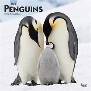 Penguins Calendar 2014