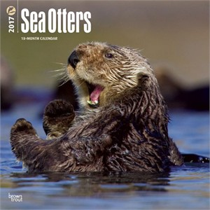 Sea Otters Calendar 2014