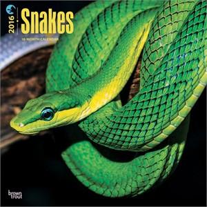 Snakes Calendar 2015