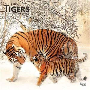Tigers Calendar 2015