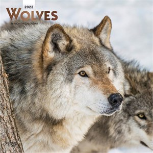 Wolves Calendar 2015