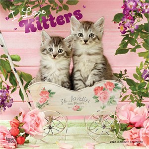 Kittens Calendar 2015