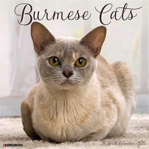 Burmese Cats Calendar 2015