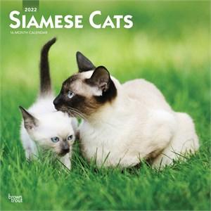 Siamese Cats Calendar 2015