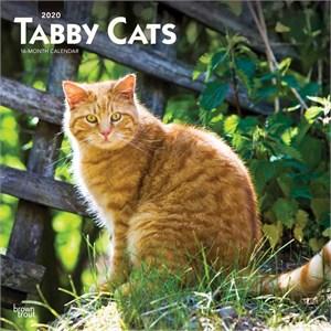Tabby Cats Calendar 2015