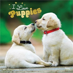 Puppies Calendar 2016