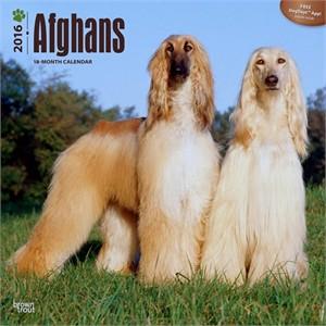Afghans Calendar 2015
