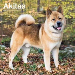 Akitas Calendar 2015