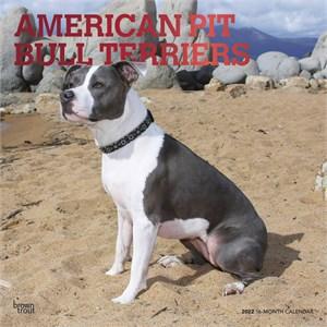 American Pit Bull Terriers Calendar 2015