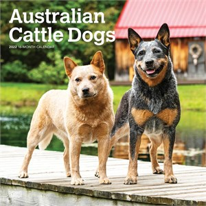 Australian Cattle Dogs Calendar 2014