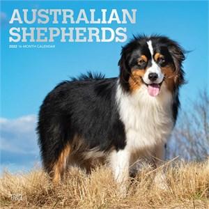 Australian Shepherds Calendar 2015