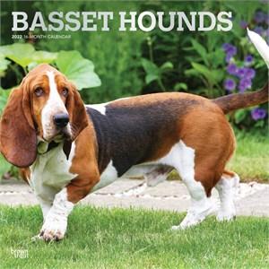 Basset Hounds Calendar 2015