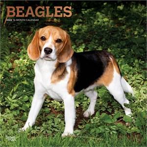 Beagles Calendar 2015