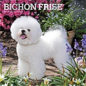 Bichon Frise Calendar 2015