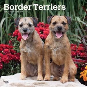 Border Terriers Calendar 2015