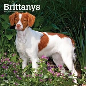 Brittanys Calendar 2015