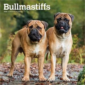 Bullmastiffs Calendar 2015
