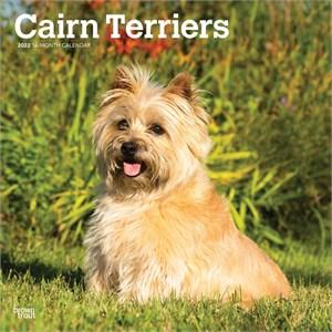 Cairn Terriers Calendar 2015
