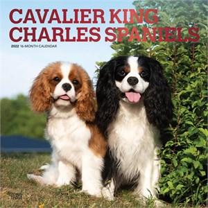 Cavalier King Charles Spaniels Calendar 2015
