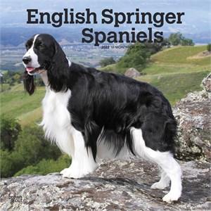 English Springer Spaniels Calendar 2015