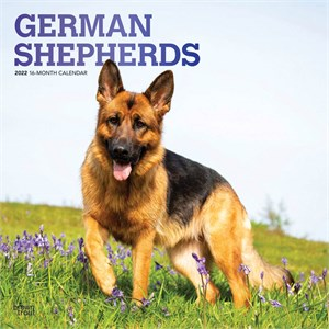 German Shepherds Calendar 2015