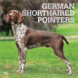 German Shorthaired Pointers Calendar 2015
