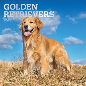 Golden Retrievers Calendar 2015