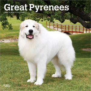Great Pyrenees Calendar 2014