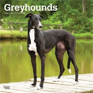 Greyhounds Calendar 2015