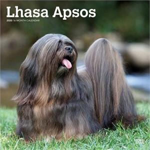 Lhasa Apsos Calendar 2015