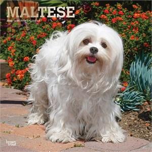 Maltese Calendar 2015