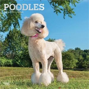 Poodles Calendar 2015