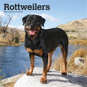 Rottweilers Calendar 2015