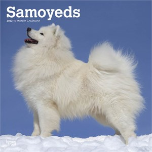 Samoyeds Calendar 2015