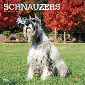 Schnauzers Calendar 2015