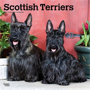 Scottish Terriers Calendar 2015