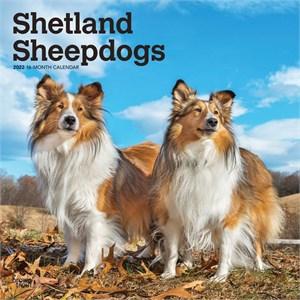 Shetland Sheepdogs Calendar 2015