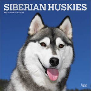 Siberian Huskies Calendar 2015