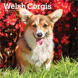 Welsh Corgis Calendar 2015