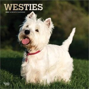 West Highland White Terriers Calendar 2015