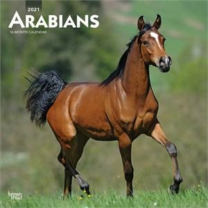 Arabians Calendar 2015