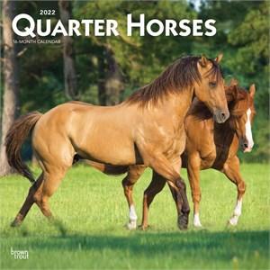Quarter Horses Calendar 2015