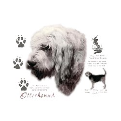 Otterhound T-Shirt - History Collection